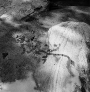 Janela do céu, 2004