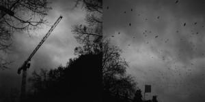 Rocinante de ferro, 2012
