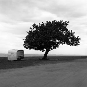 Soledad I, 2001